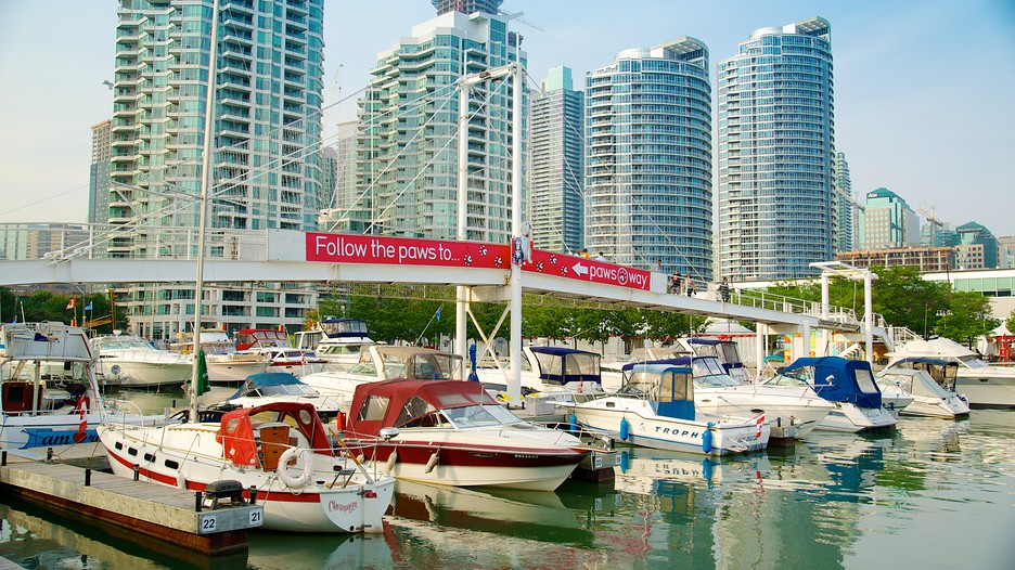 Harbourfront-Centre-49577